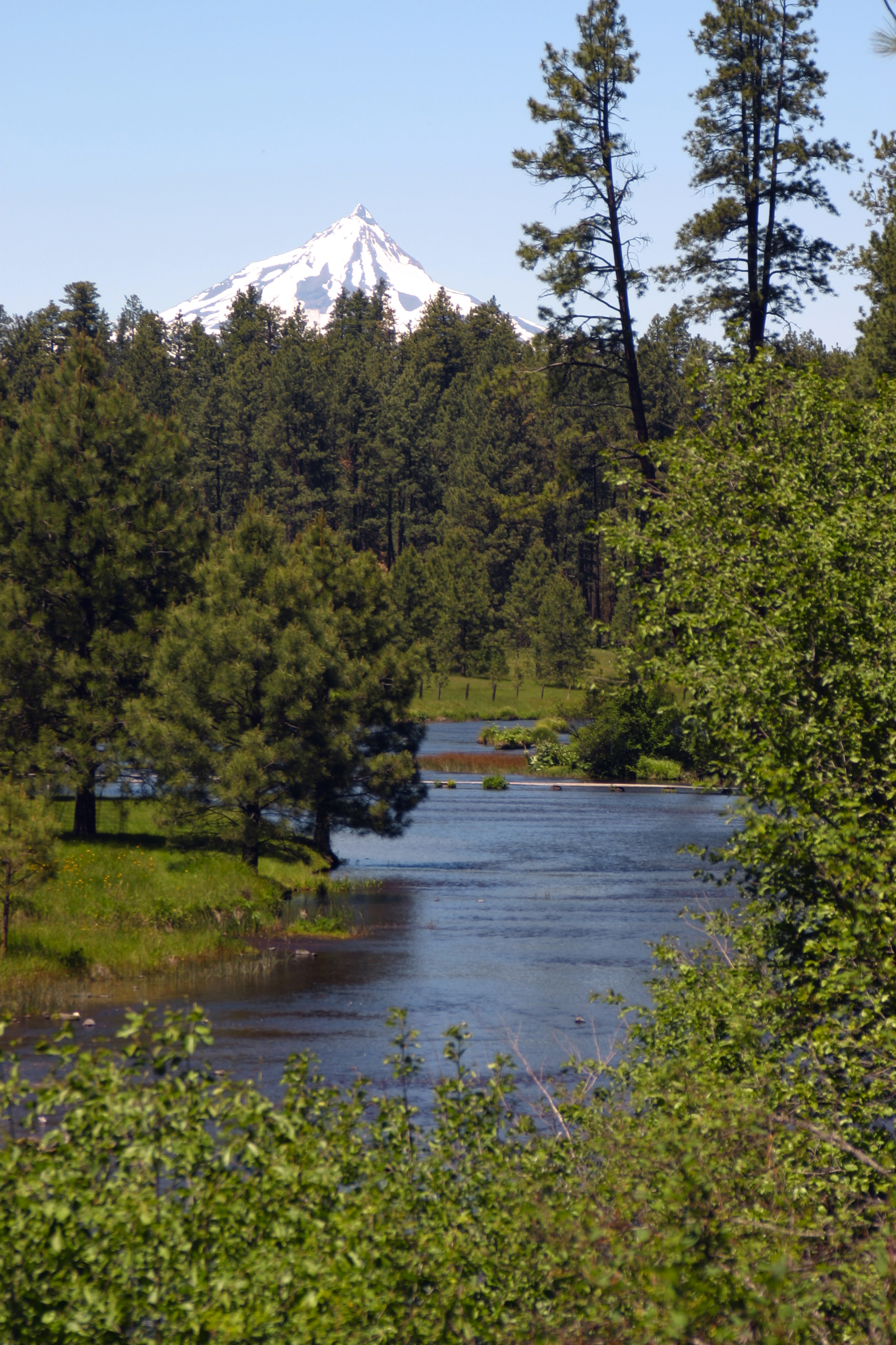 ph.metolius_river.jpg